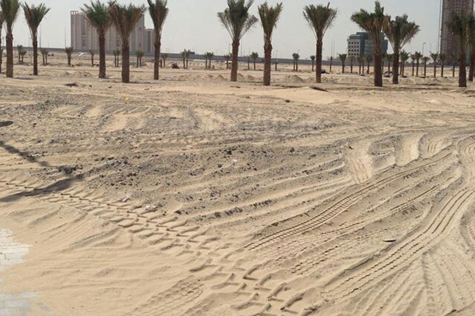LARGE LAND RESIDENTIAL PLOT IN AL BARSHA